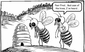 The Big Buzz-Off