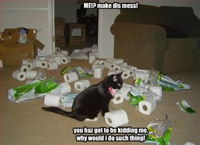 ME!? make dis mess!                you haz got to be kidding me, why would i do such thing!