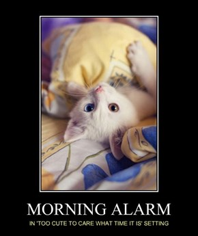 MORNING ALARM