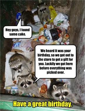 One man's trash is another man, er, raccoon's treasure