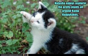 Natasha enjoys asplorin' the pretty plants all around Kamp Kuppykakes..