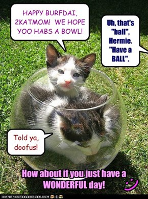 HAPPY BURFDAI, 2KATMOM!  WE HOPE YOO HABS A BOWL!