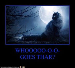 WHOOOOO-O-O- GOES THAR?