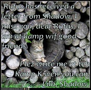 Rufus has received a letter from Shadow. I miss you, dear Rufus. I am at kamp wif good friends.   Plez write me at teh Kamp K wen you can. Lub, Shadow.