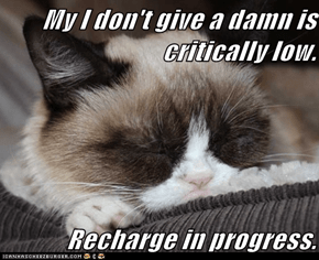 My I don't give a damn is critically low.  Recharge in progress.