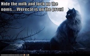 Hide the milk and lock up the noms.....Werecat is on the prowl