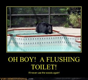 OH BOY!  A FLUSHING TOILET!