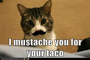 I mustache you for your taco