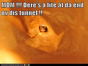 MOM !!! Dere's a lite at da end ov dis tunnel !!