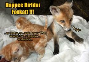Happee Birfdai Foxkatt !!!