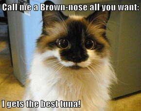 Call me a Brown-nose all you want:  I gets the best tuna!