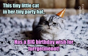 Happy Birthday, furrgetmenot!