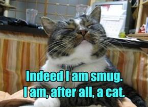 Indeed I am smug. I am, after all, a cat.