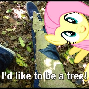 well i beat you to it, Fluttershy