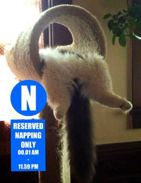RESERVED NAPPING ONLY