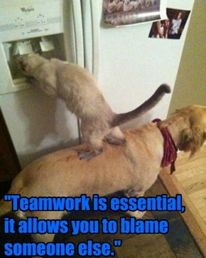 """Teamwork is essential, it allows you to blame someone else."""