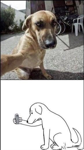 WTF Dogs are Taking Selfies Now?