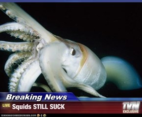 Breaking News - Squids STILL SUCK