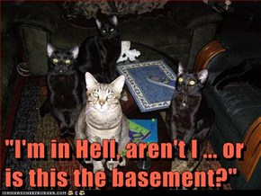 """I'm in Hell, aren't I ... or is this the basement?"""