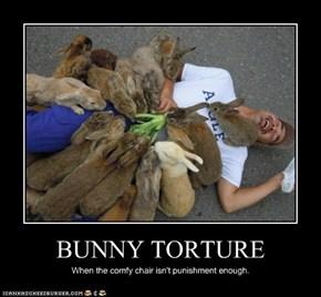 BUNNY TORTURE