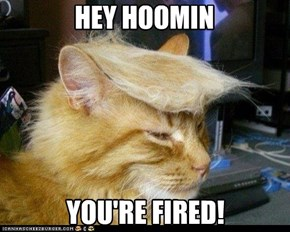 The Donald Kitteh won't tolerate your incompetence