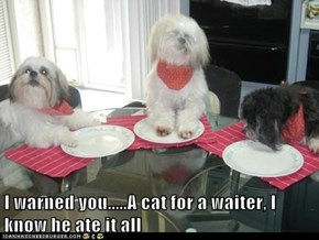 I warned you.....A cat for a waiter, I know he ate it all