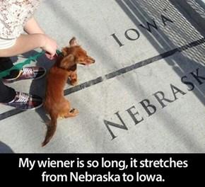 Long Wiener