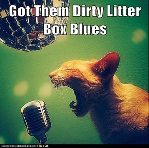 Got Them Dirty Litter Box Blues