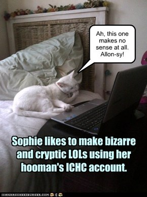 Reason #7 not to use your cat's name as a password'