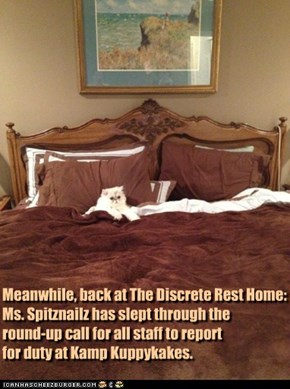 Meanwhile, back at The Discrete Rest Home: Ms. Spitznailz has slept through the  round-up call for all staff to report  for duty at Kamp Kuppykakes.