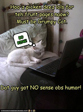 Hoo'z picken deez lols for teh frunt pages naow?   Must be Grumpy Cat.