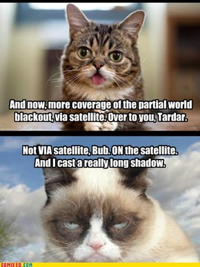 Breaking Kitteh News