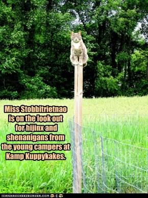 Miss Stobbitrietnao is on the look out  for hijinx and shenanigans from the young campers at Kamp Kuppykakes.
