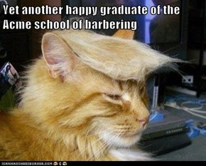 Yet another happy graduate of the Acme school of barbering