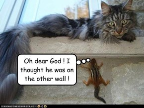Oh dear God ! I thought he was on the other wall !