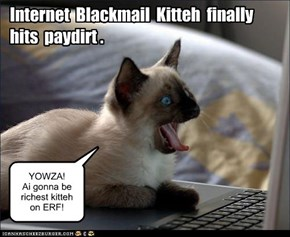 Blackmail kitteh hits paydirt.