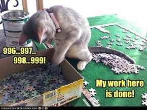Jigsaw Puzzle + Cat = 'I don't know, dear. Look under the fridge.'