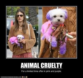 ANIMAL CRUELTY