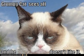 Grumpy Cat  sees all  and he                                 doesn't like it.