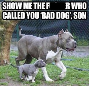 Daddy Dog's Got Your Back