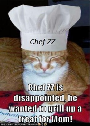 Chef ZZ is disappointed, he wanted to grill up a treat for Mom!