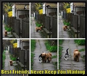 Best Friends Never Keep You Waiting
