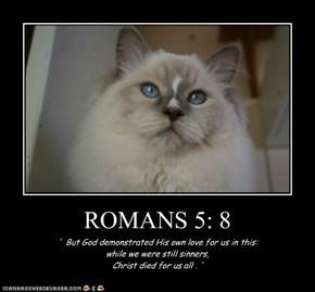 ROMANS 5: 8