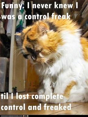 Nobuddy tu control and I be tha freak...oopsie