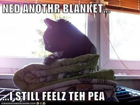 NED ANOTHR BLANKET...  ...I STILL FEELZ TEH PEA