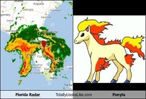 Florida Radar Totally Looks Like Ponyta