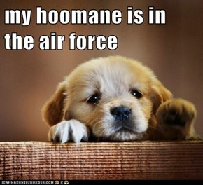 my hoomane is in the air force