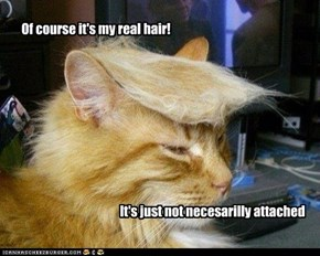 Of course it's my real hair!