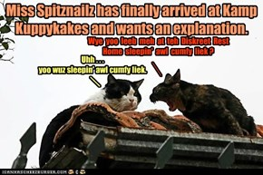 Miss Spitznailz has finally arrived at Kamp Kuppykakes and wants an explanation.