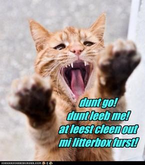 dunt go! dunt leeb me! at leest cleen out mi litterbox furst!